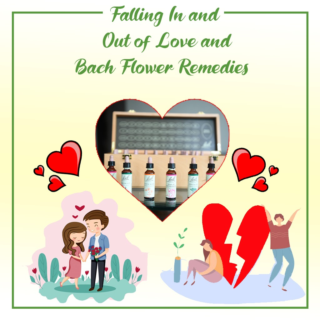 Falling in and out of love and Bach Flower Remedies